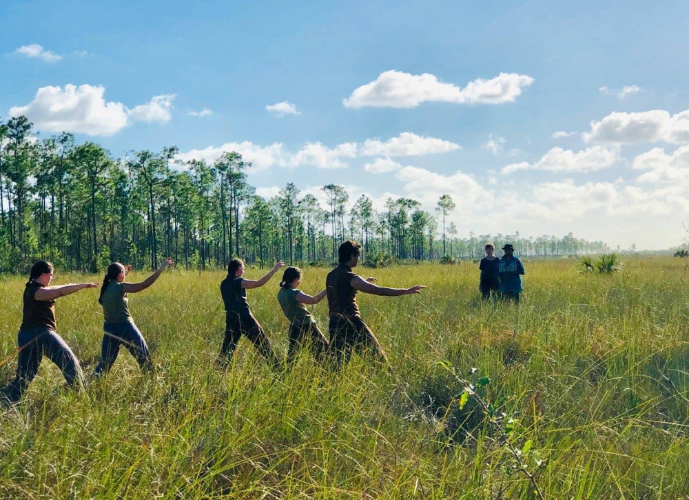 "Dancers in Dale Andree's ""Everglades Imprint"" in Long Pine Key, Everglades National Park. Photo by Deborah Mitchell/AIRIE."