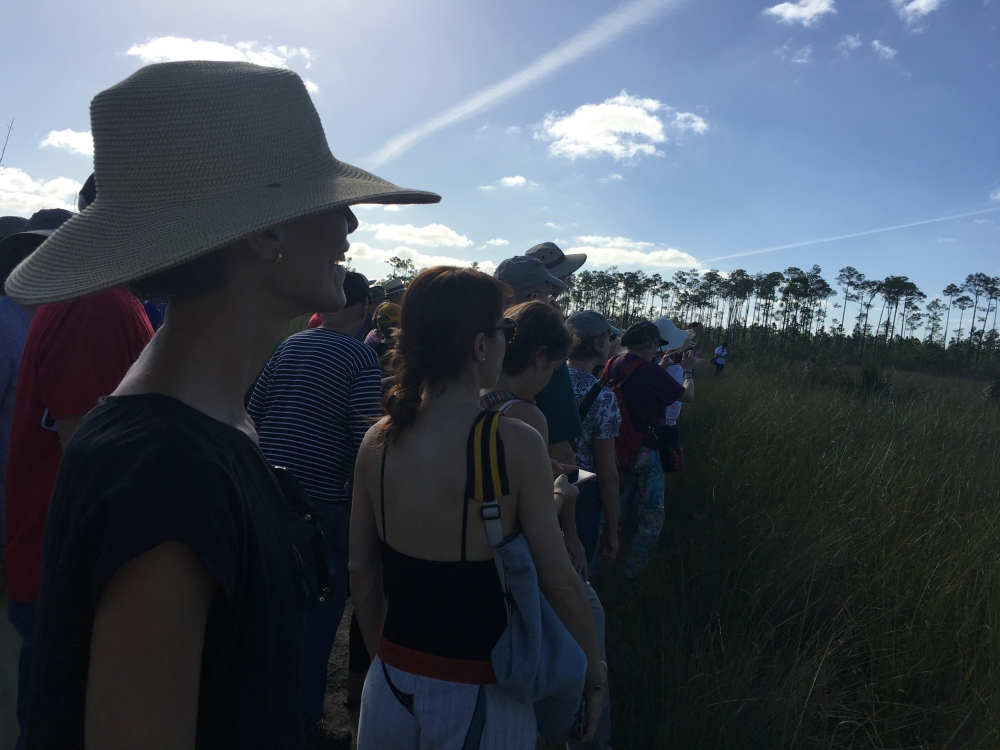"The audience at Dale Andree's ""Everglades Imprint"" in Long Pine Key, Everglades National Park. Photo by Jordan Levin."